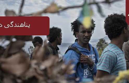 پناهندگی در دانمارک 495x319 دانمارک