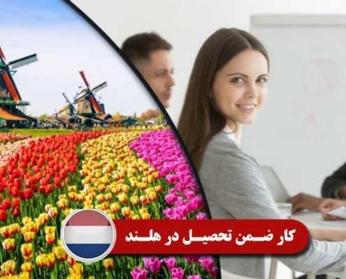 کار ضمن تحصیل در هلند