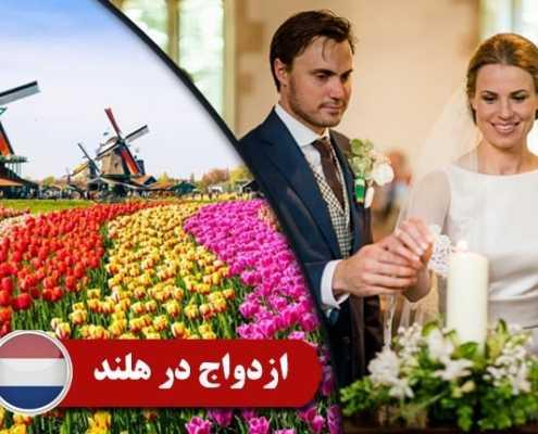 ازدواج در هلند 4 495x400 هلند