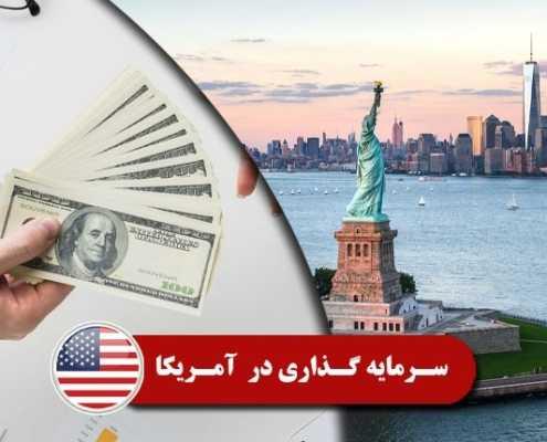 سرمایه گذاری در آمریکا 2 495x400 آمریکا