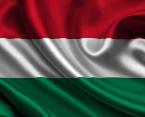 308 495x400 مجارستان