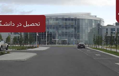 تحصیل در دانشگاههای ایسلند 495x319 ایسلند