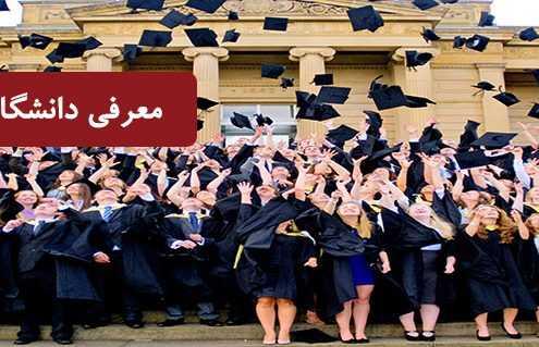Most 2323 495x319 امارات