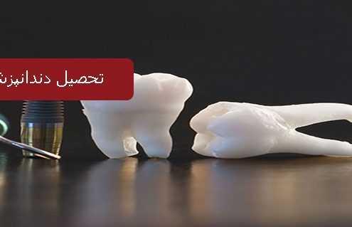 تحصیل دندانپزشکی در بلژیک 495x319 بلژیک