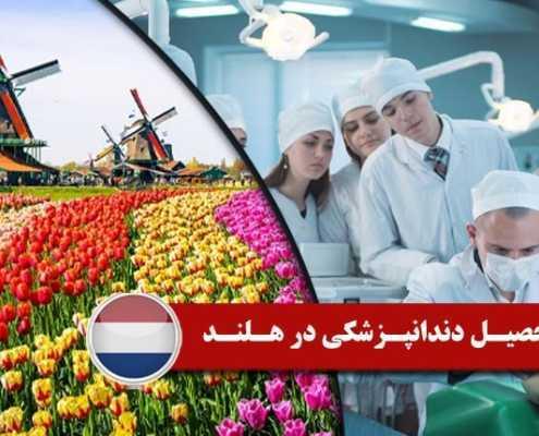 تحصیل دندانپزشکی در هلند