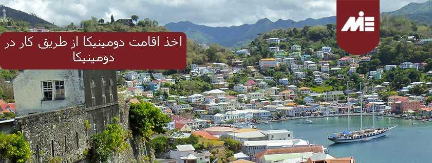 اخذ اقامت دومینیکا از طریق کار در دومینیکا
