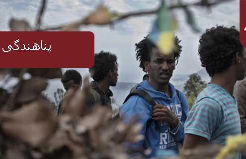 پناهندگی در دومینیکا 495x319 دومینیکا