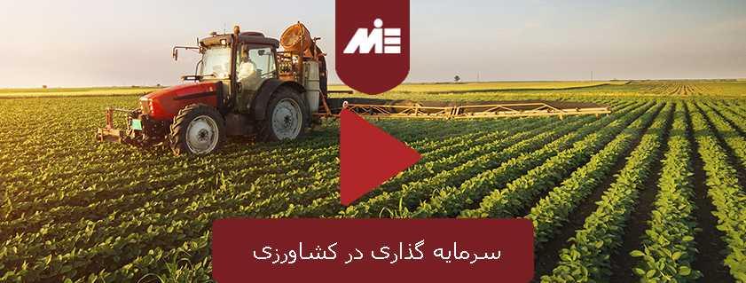 سرمایه گذاری در کشاورزی