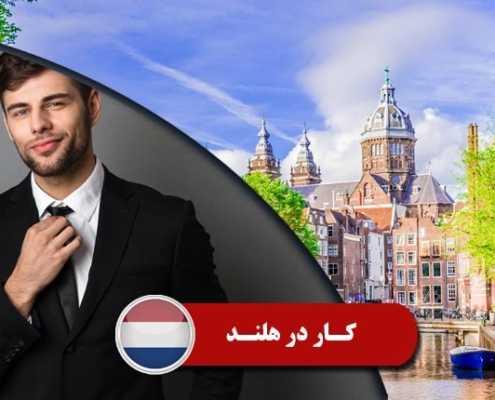 کار در هلند 2 1 495x400 هلند