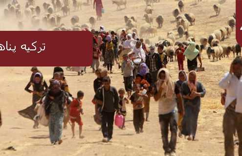 ترکیه پناهندگی 495x319 ترکیه