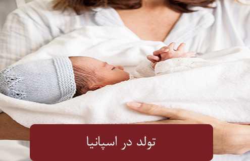 تولد در اسپانی 495x319 مقالات