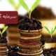 سرمایه گذاری خارجی و روشهای ان