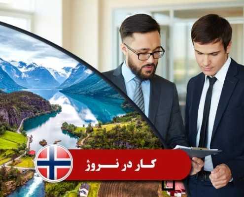 کار در نروژ 1 495x400 نروژ