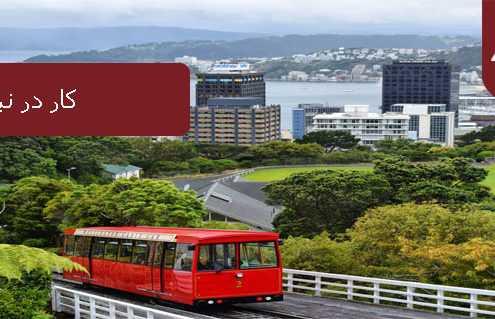 کار در نیوزیلند