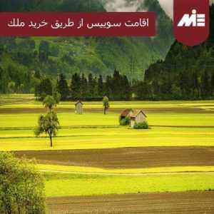 photo 2018 11 19 21 55 37 300x300 اقامت سوئیس از طریق خرید ملک