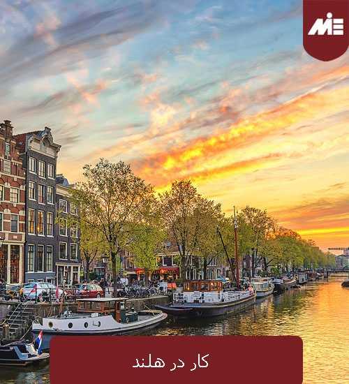 کار در هلند کار در هلند