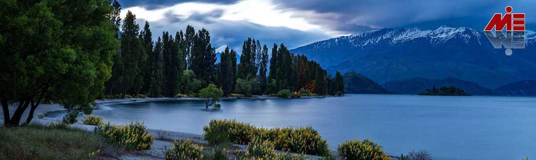 تحصیل پزشکی در نیوزلند 7 تحصیل پزشکی در نیوزلند