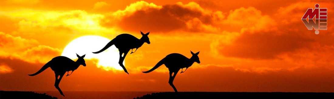 پاسپورت استرالیا 5 تحصیل در استرالیا