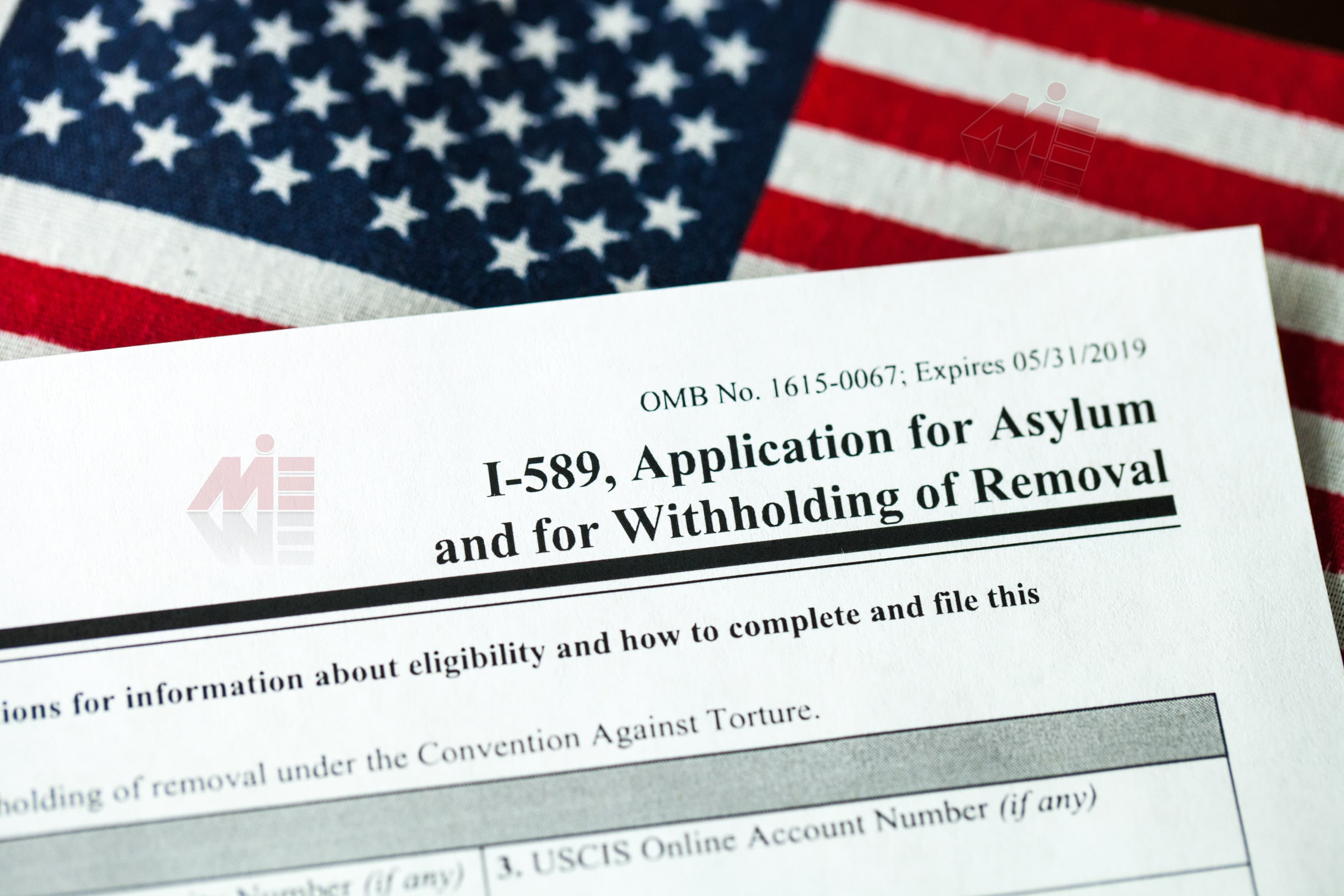 gettyimages 1072666954 پناهندگی در آمریکا