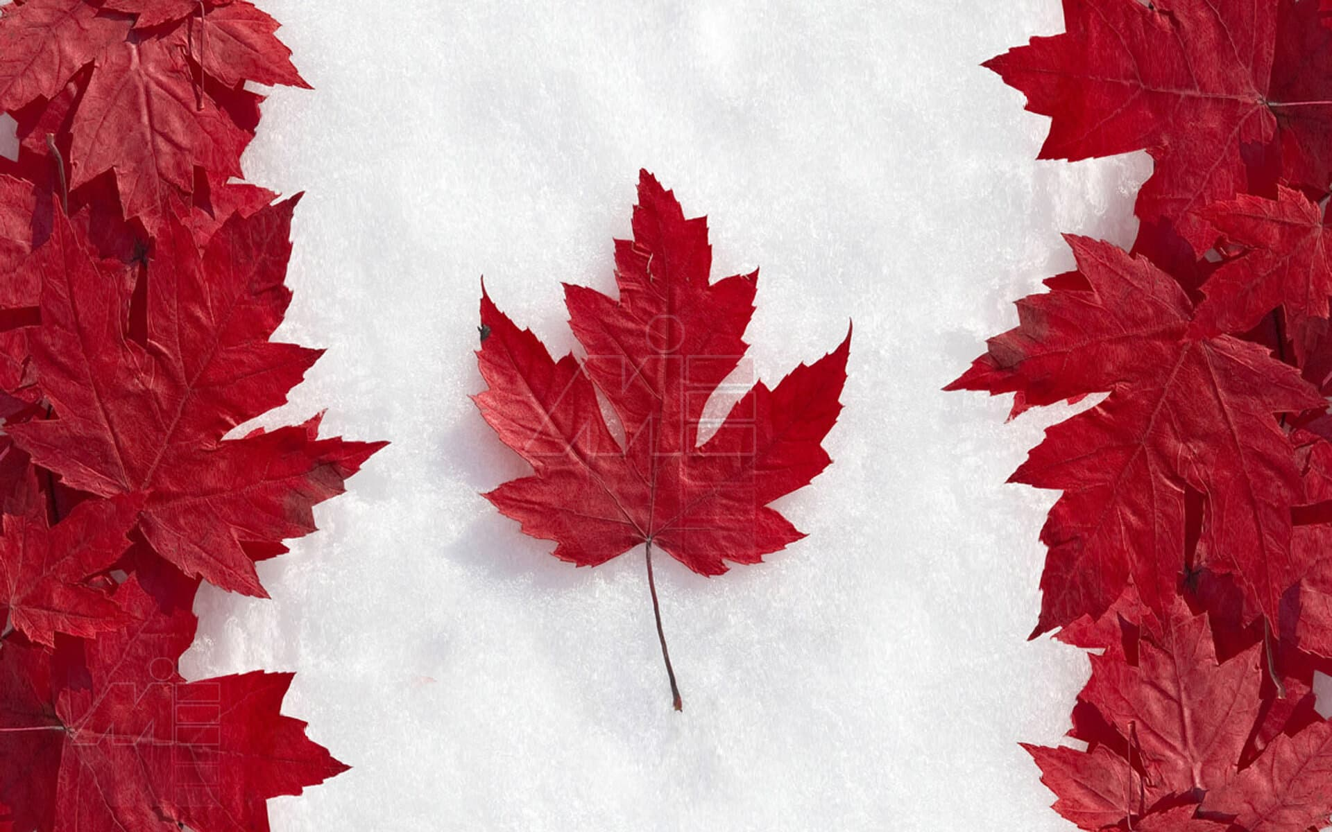 i2 wp com canada 1 اسکیل ورکر کانادا Skilled Worker