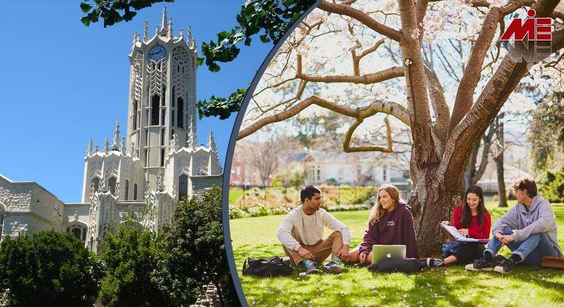 تحصیل در نیوزلند 3 تحصیل در نیوزلند