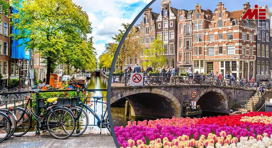 اقامت هلند 3 دوره زبان در هلند