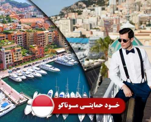 خودحمایتی موناکو 3 495x400 موناکو