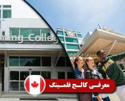 معرفی کالج فلمینگ 2 495x400 مقالات