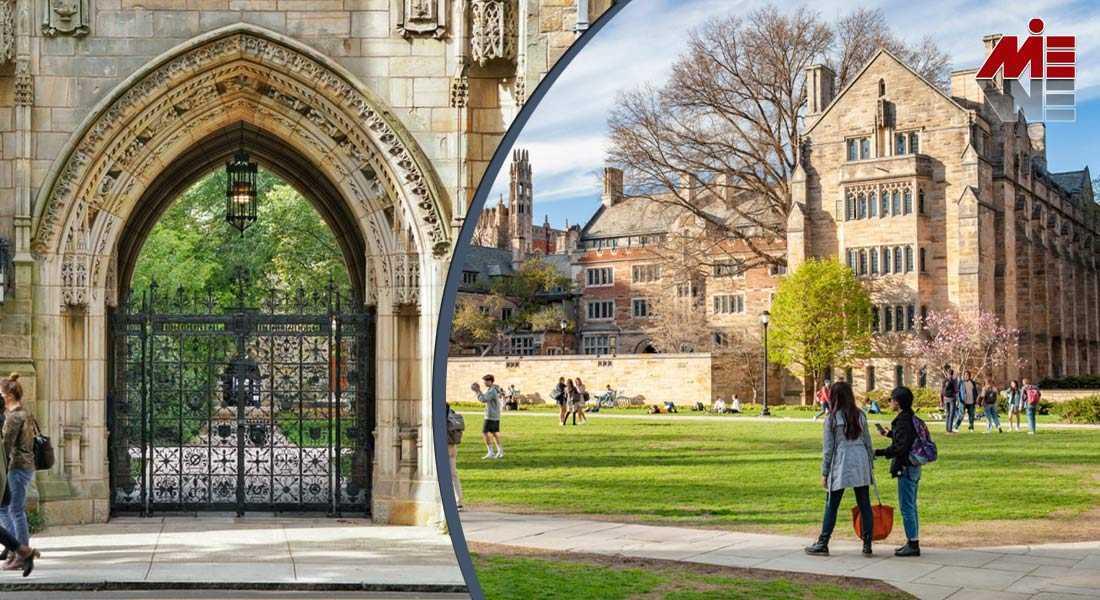 معرفی دانشگاه Yale 3 تحصیل داروسازی در آمریکا
