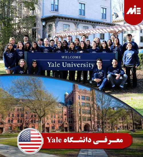 معرفی دانشگاه Yale تحصیل داروسازی در آمریکا