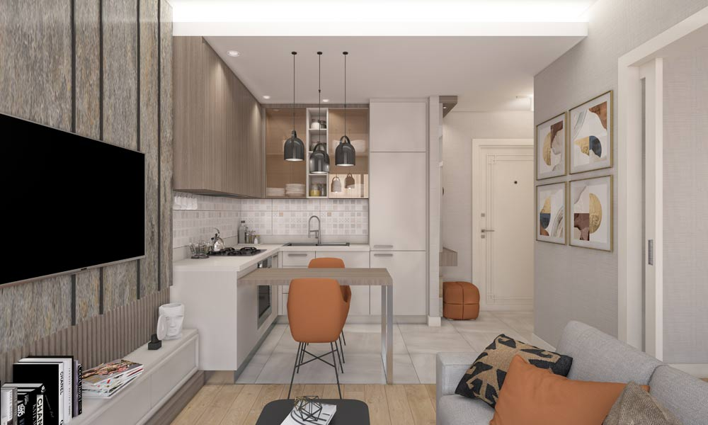 1 1 daire salon mutfak yatak odasi son 2 املاک ترکیه پروژه شماره 46