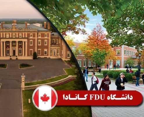 دانشگاه FDU کانادا 2 495x400 مقالات