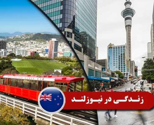 زندگی در نیوزلند 2 495x400 مقالات
