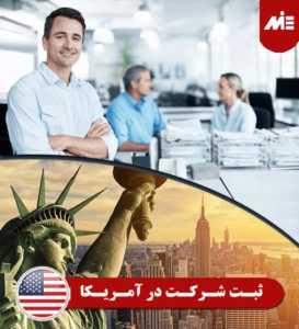 ثبت شرکت در آمریکا 273x300 زندگی در نیویورک