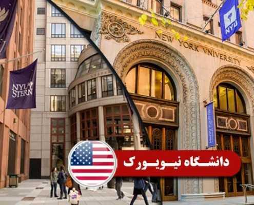 دانشگاه نیویورک 2 495x400 مقالات