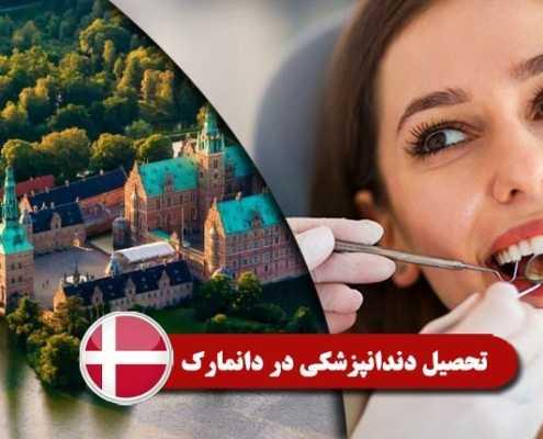 تحصیل دندانپزشکی در دانمارک Index3 495x400 مقالات